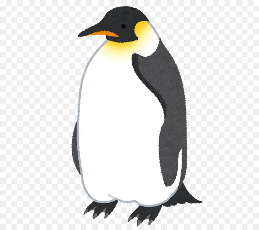 Clipart penquin pengui. Penguin cartoon bird transparent