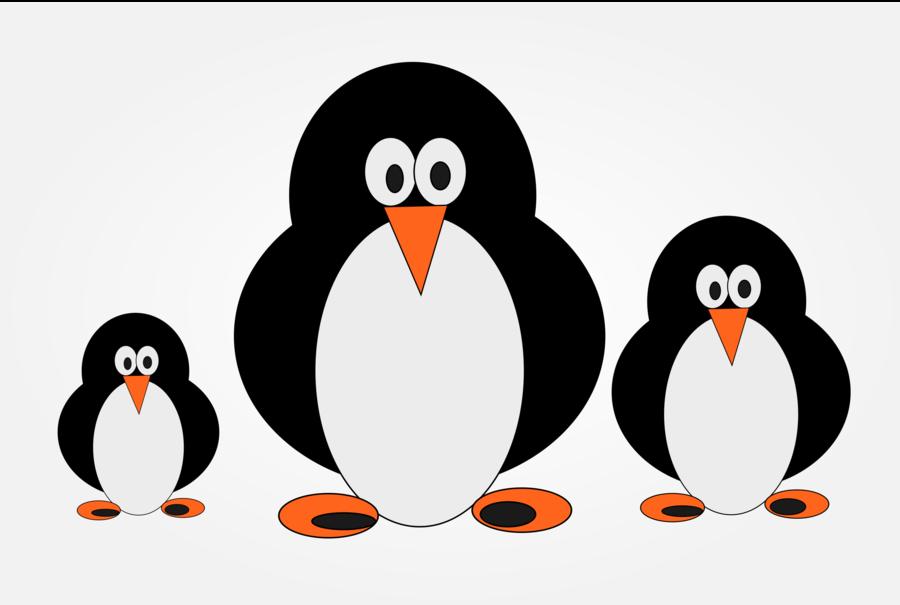 Cartoon bird transparent . Clipart penguin penguin family