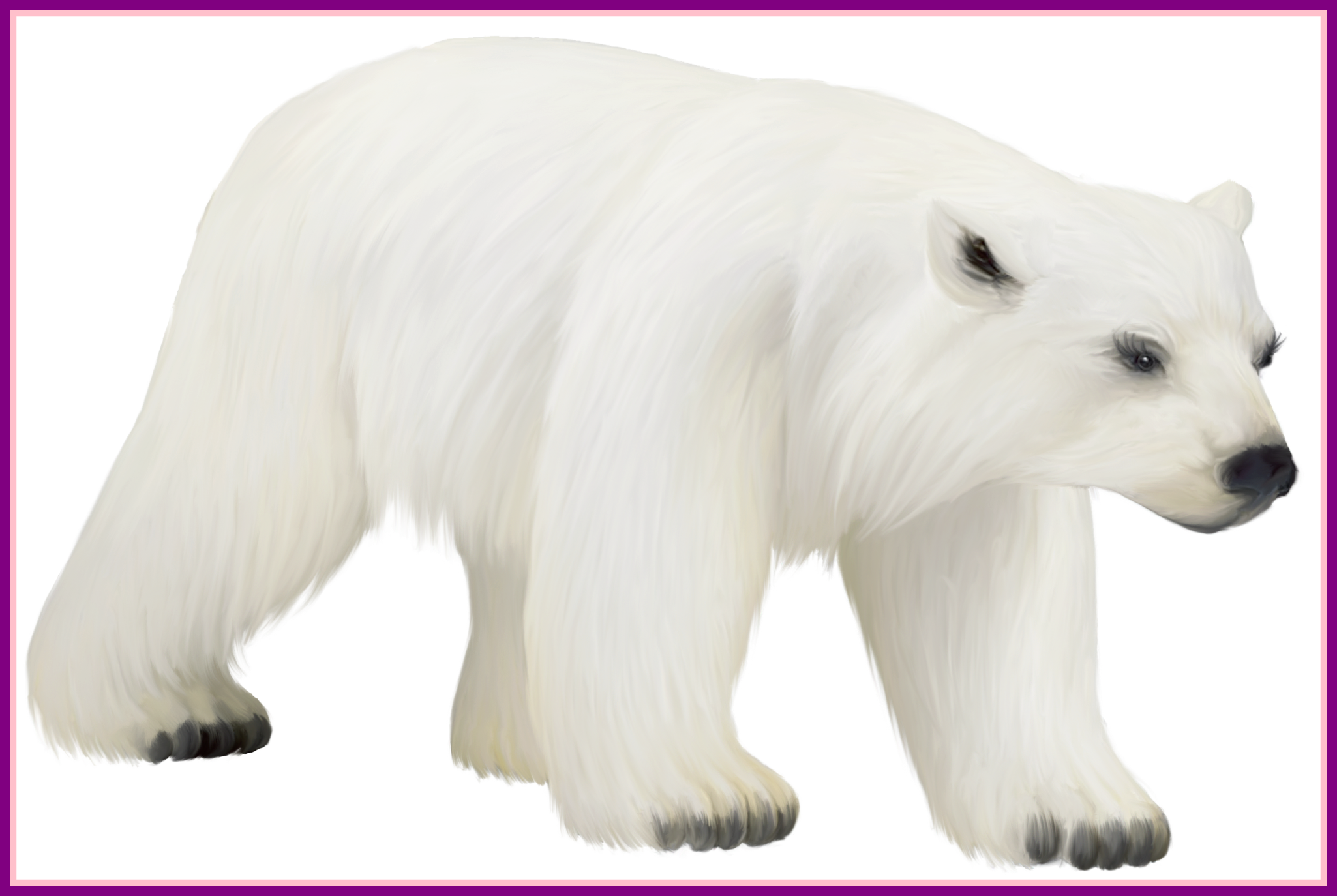 Clipart penquin polar bear. Incredible penguin and pict