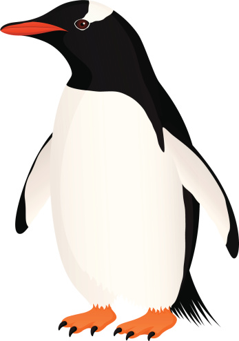 Clipart penguin realistic. Free gentoo cliparts download