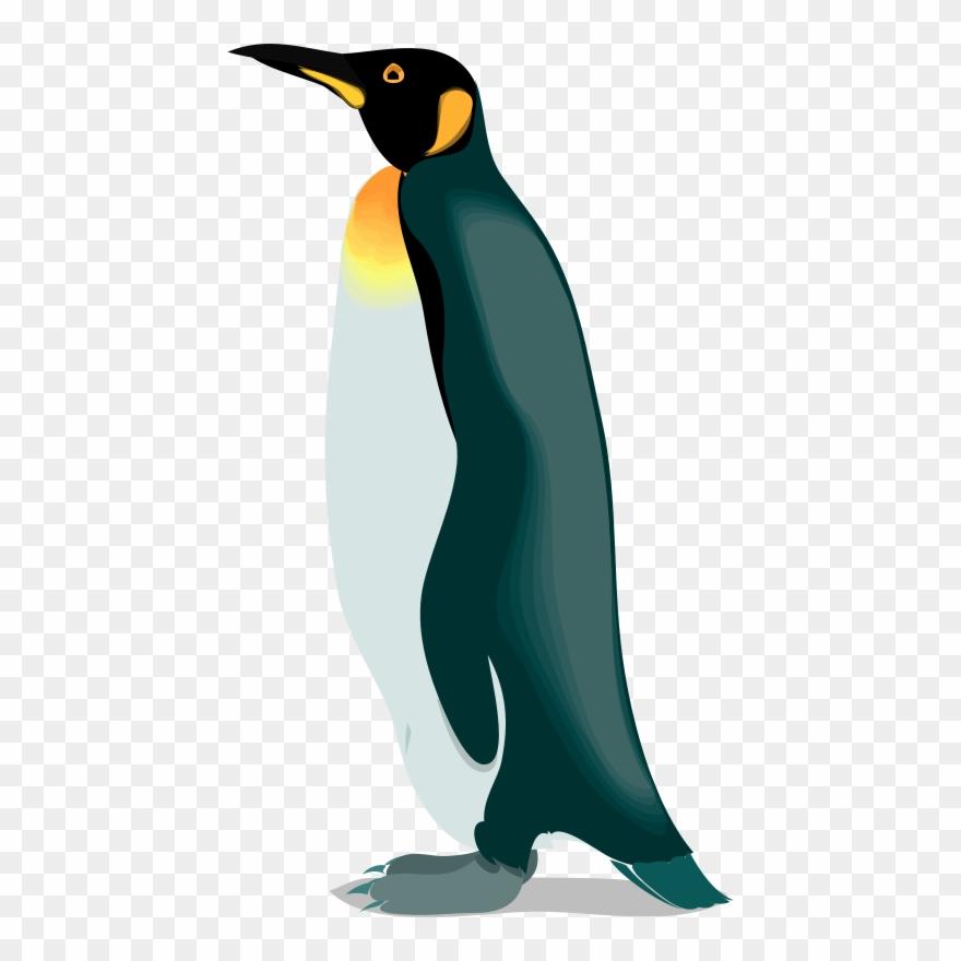 Clipart penguin realistic. The emperor penguins gentoo