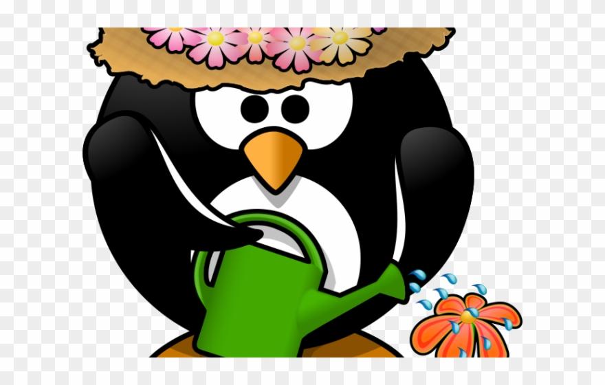 Clipart penquin spring. Penguin colors of a