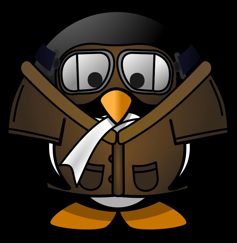 Penguin clipart profile. Brown pilot
