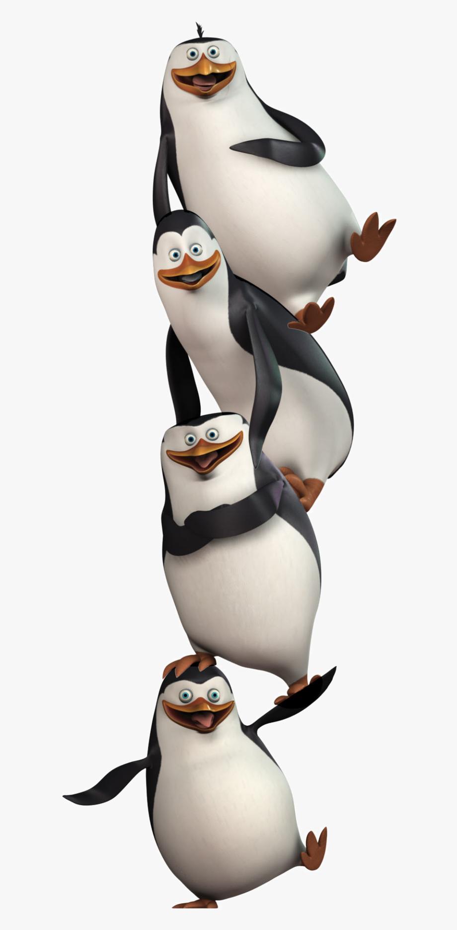 Penguins . Clipart penquin penguin madagascar