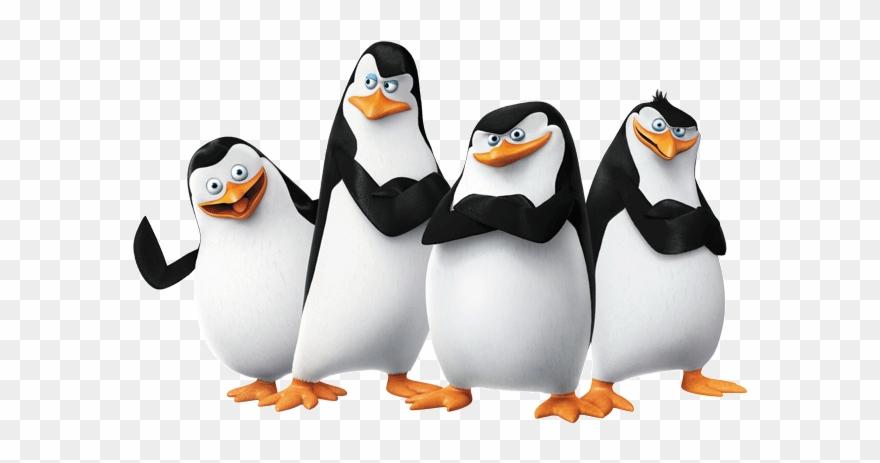 Clipart penquin penguin madagascar. King name penguins