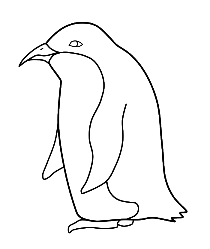 Clipart penquin traceable. Penguin drawing step by