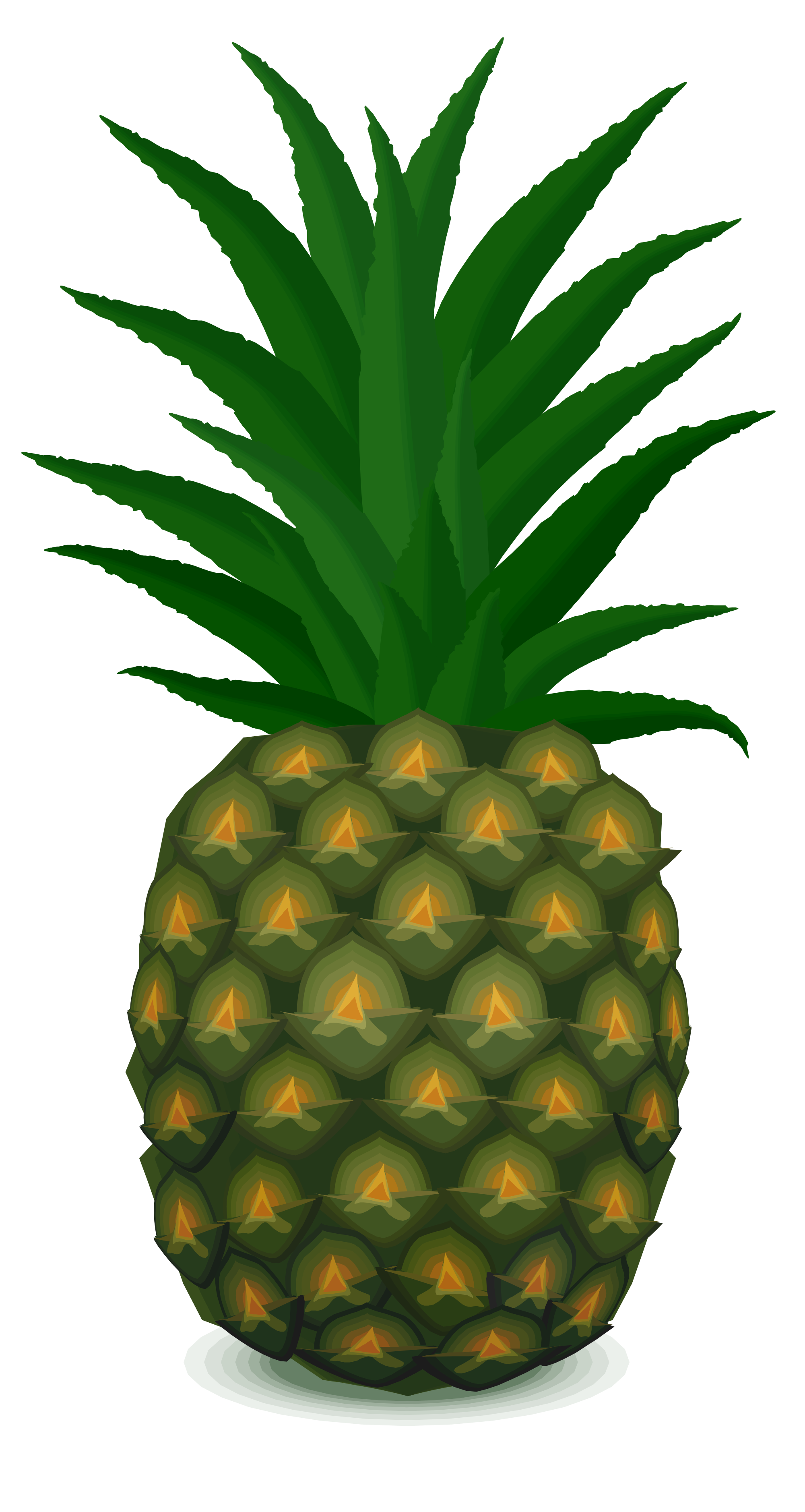Clipart person pineapple. File svg wikimedia commons