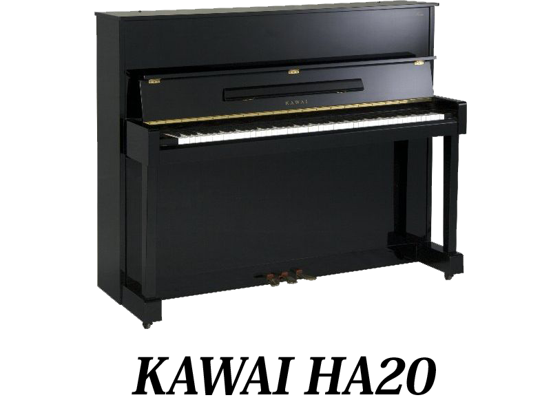 Piano clipart curved. Takemoto co ltd current