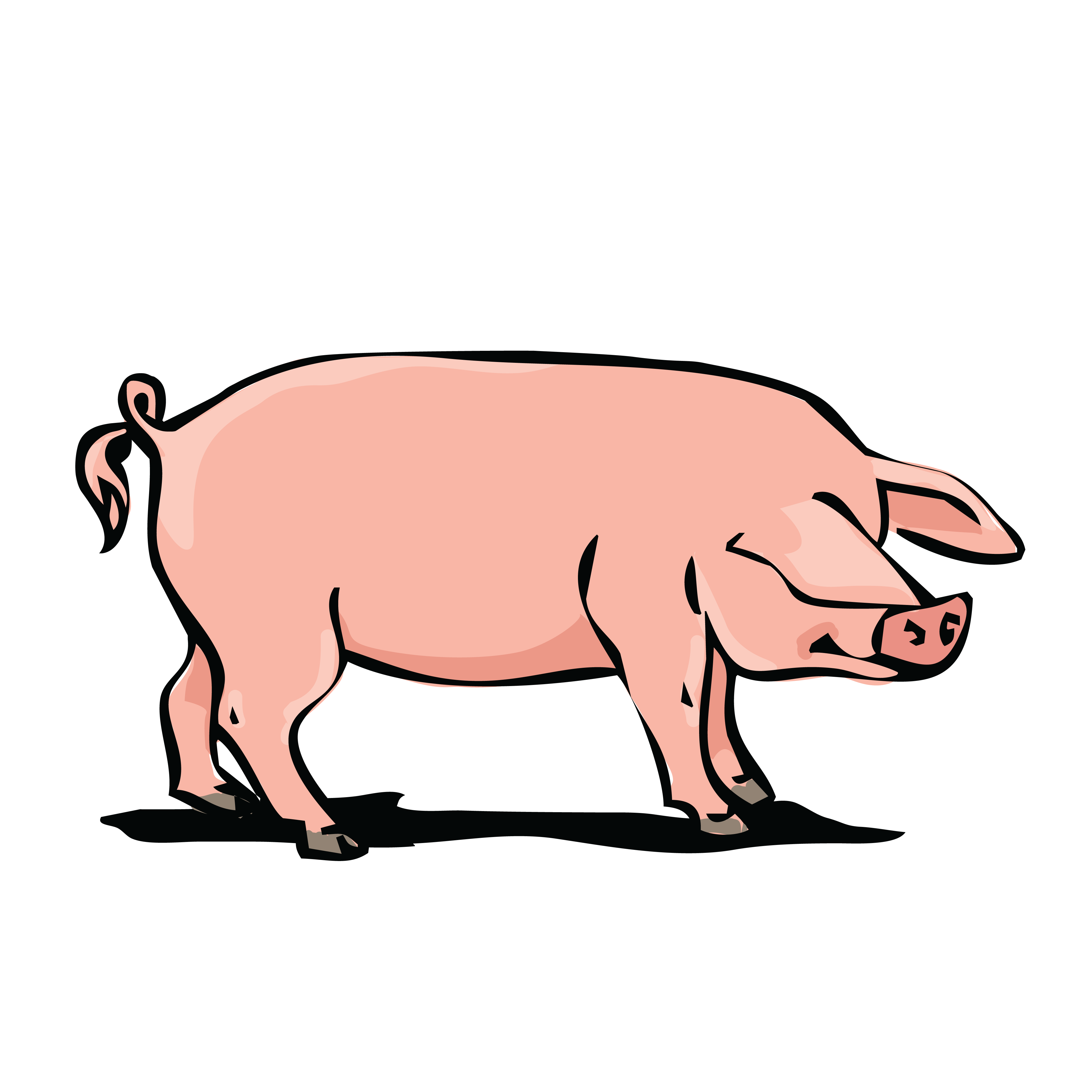 Pigs clipart baboy.  hog huge freebie