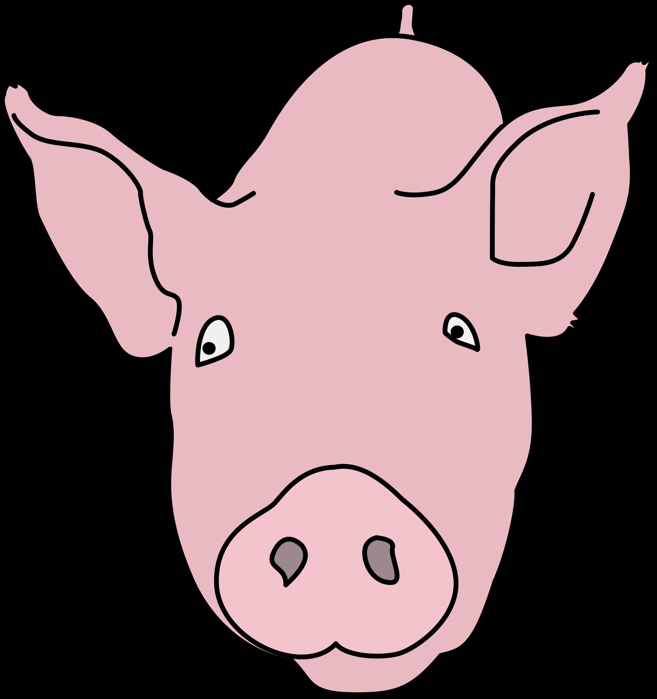 Pig colour big image. Nose clipart color