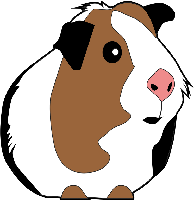 Guinea illustration medium image. Clipart pig dog