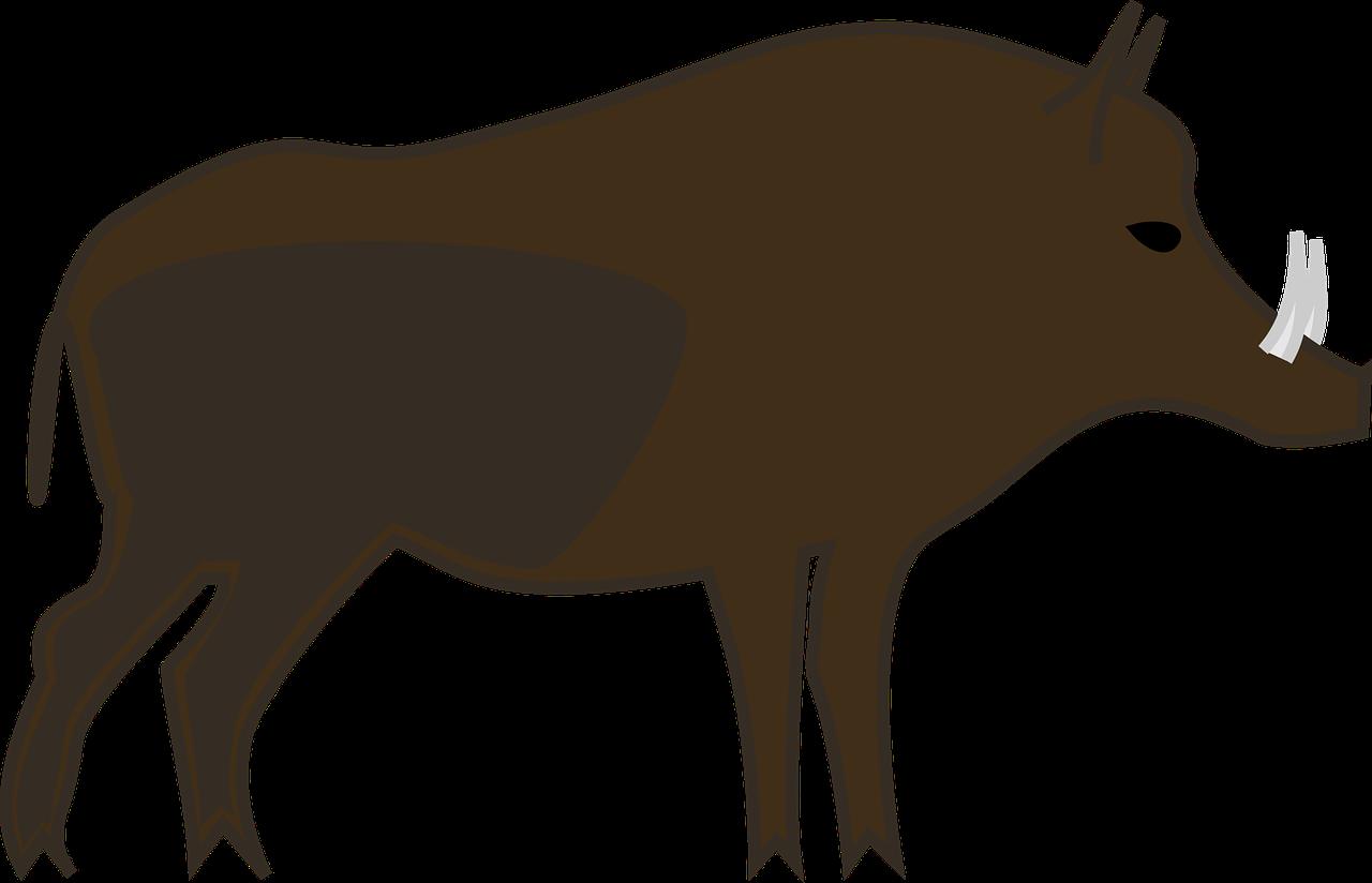 Clipart pig hog. Wild boar common warthog