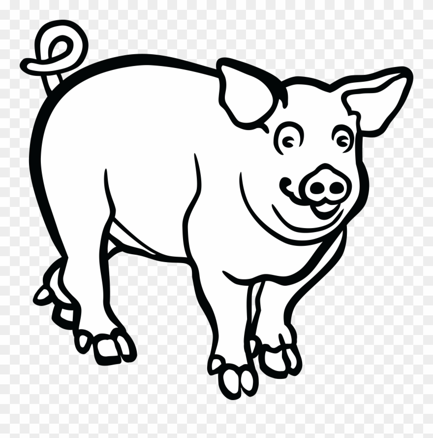 Wild boar drawing black. Pig clipart line art