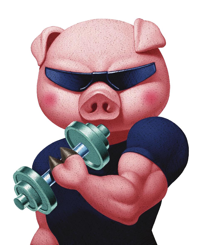 Piggyback productions llc contact. Clipart pig muscular