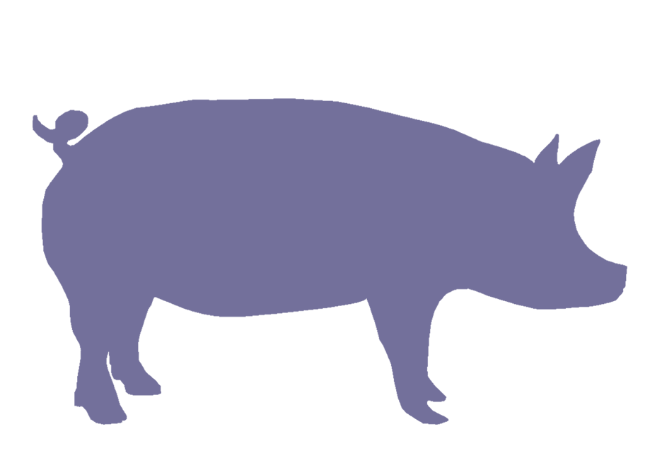 Free show pig silhouette. Pigs clipart swine