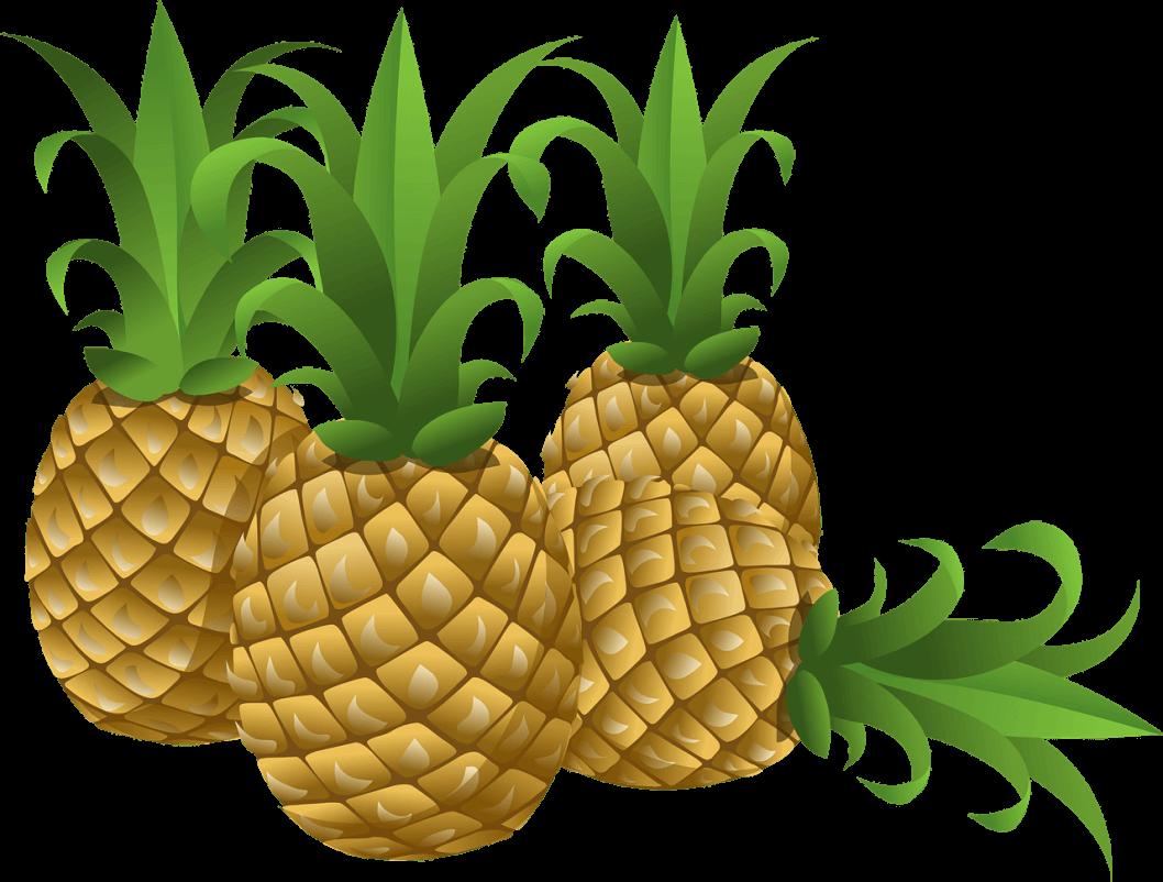 clipart pineapple ananas
