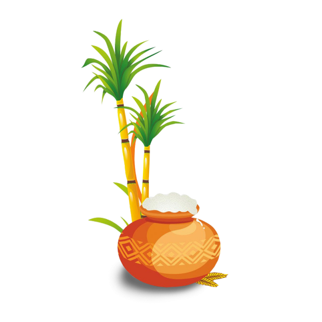 Pineapple clipart atis. Happy pongal dia tamil
