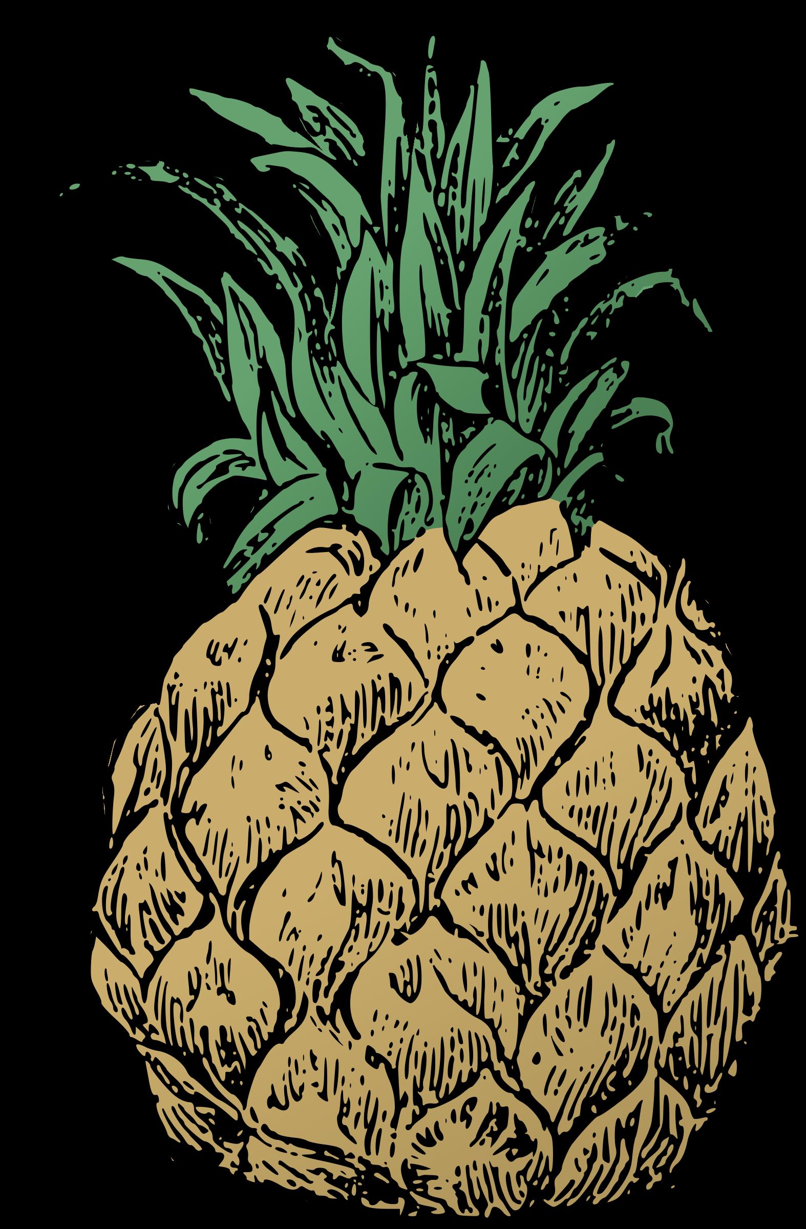 clipart pineapple basic