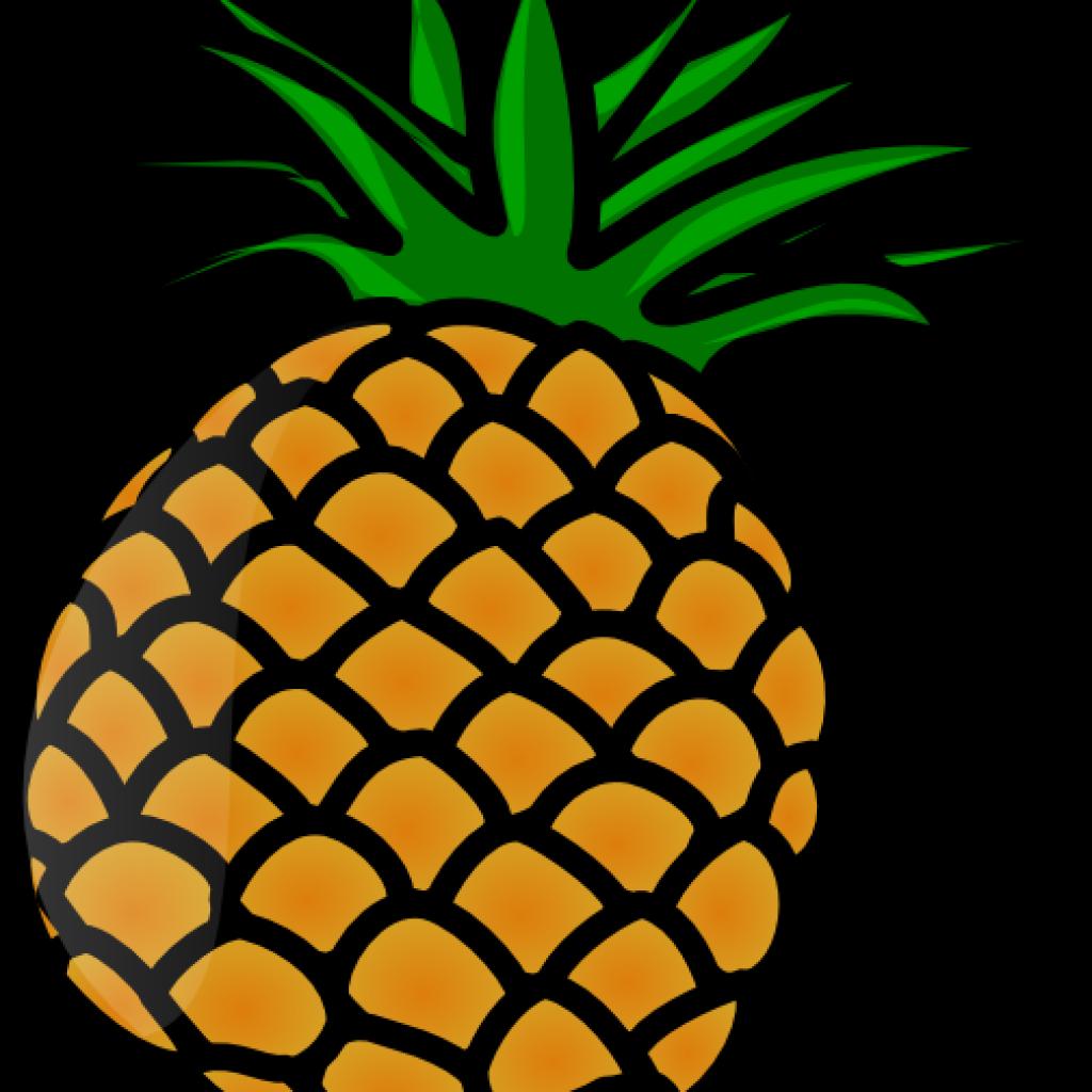 Pineapple clipart classy.  huge freebie download