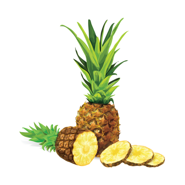 Pineapple clipart vector. Illustration png and