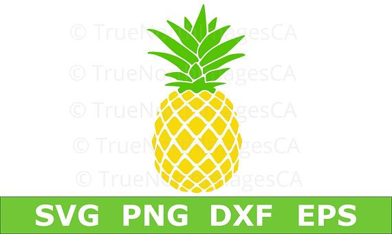 Svg silhouette . Clipart pineapple file