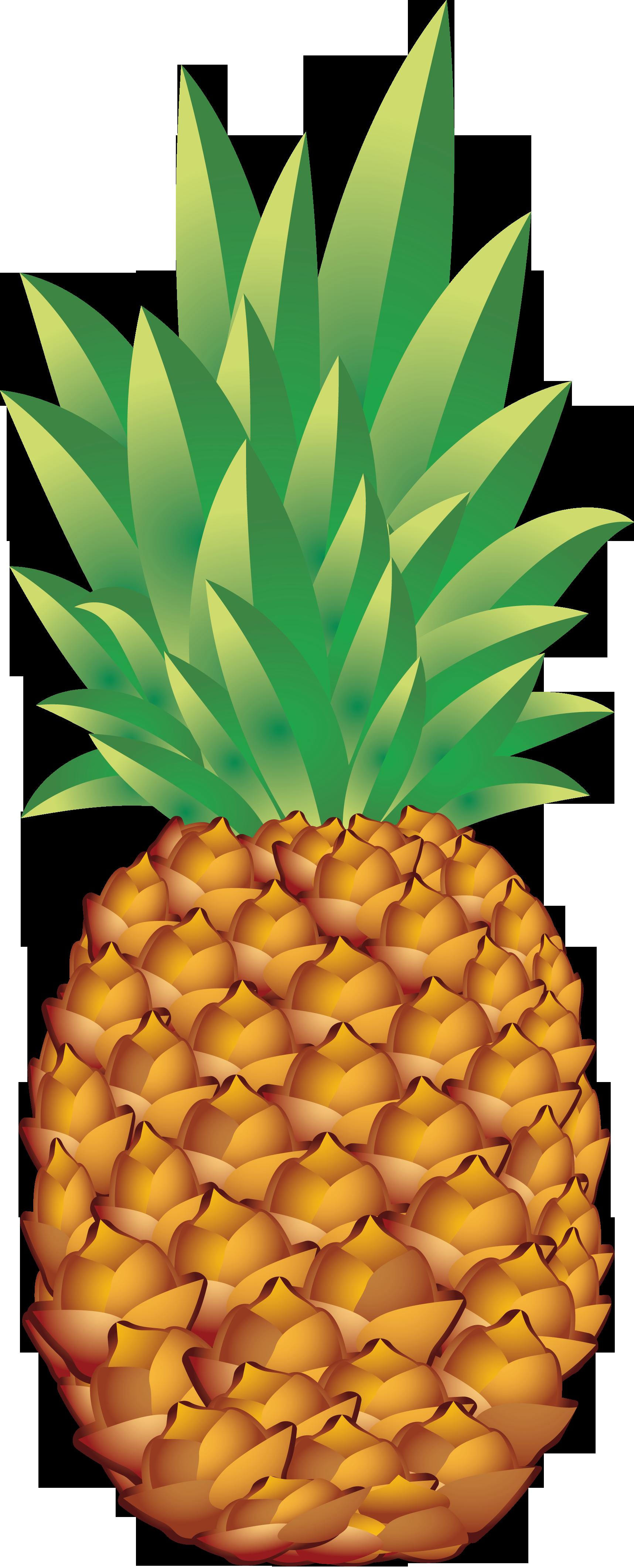 clipart pineapple logo