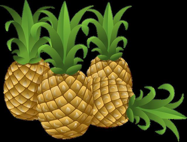 Clipart pineapple luau. Current parents solomon schechter