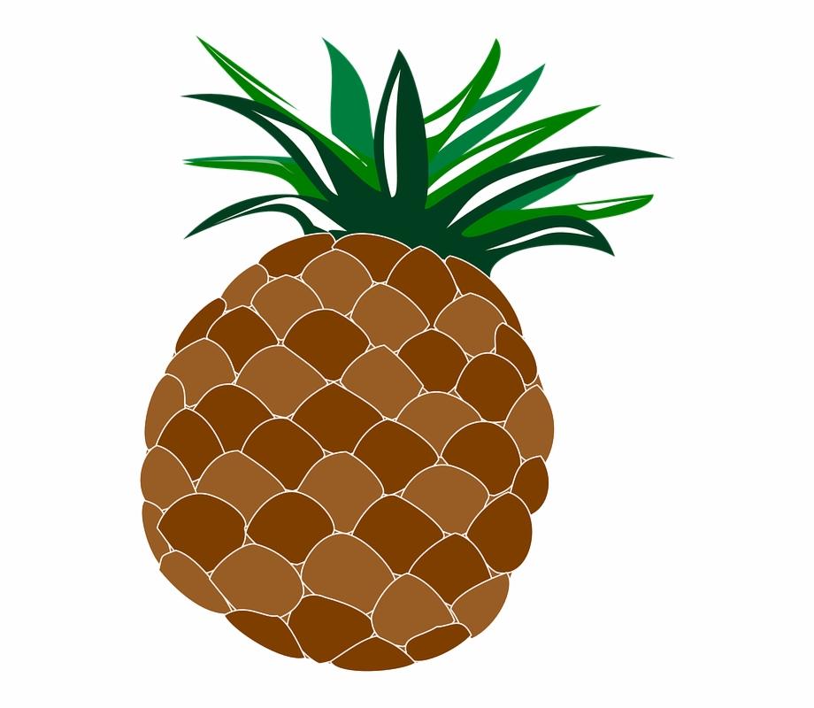 Food fruit hawaii hawaiian. Clipart pineapple luau