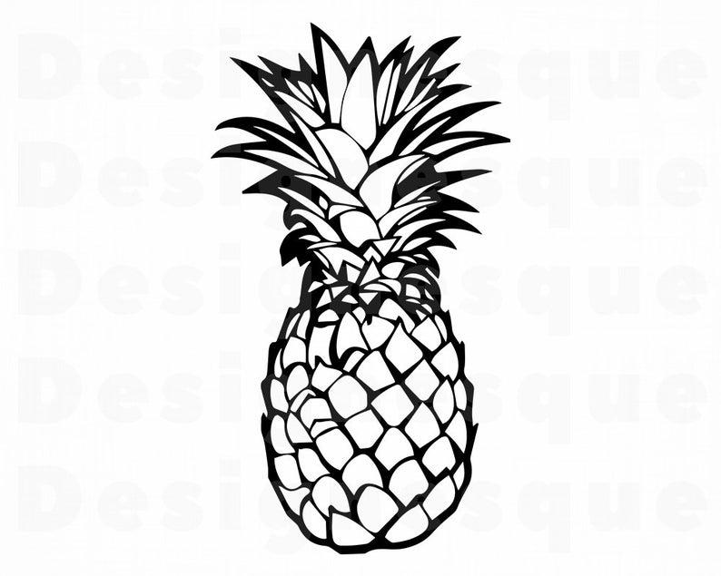 Svg files for cricut. Clipart pineapple outline
