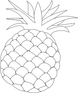 Free cliparts download clip. Pineapple clipart outline
