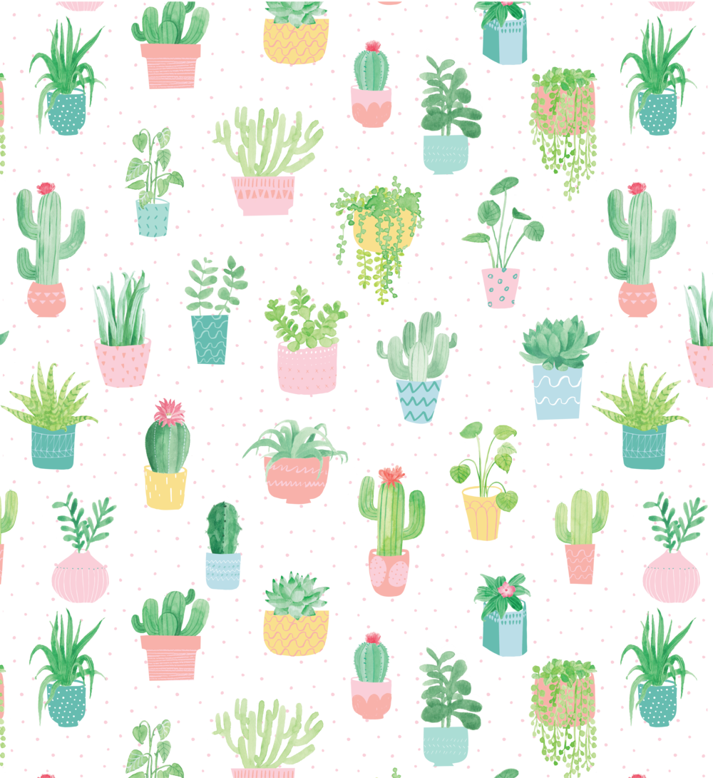 Cactus hana reed png. Clipart pineapple pastel