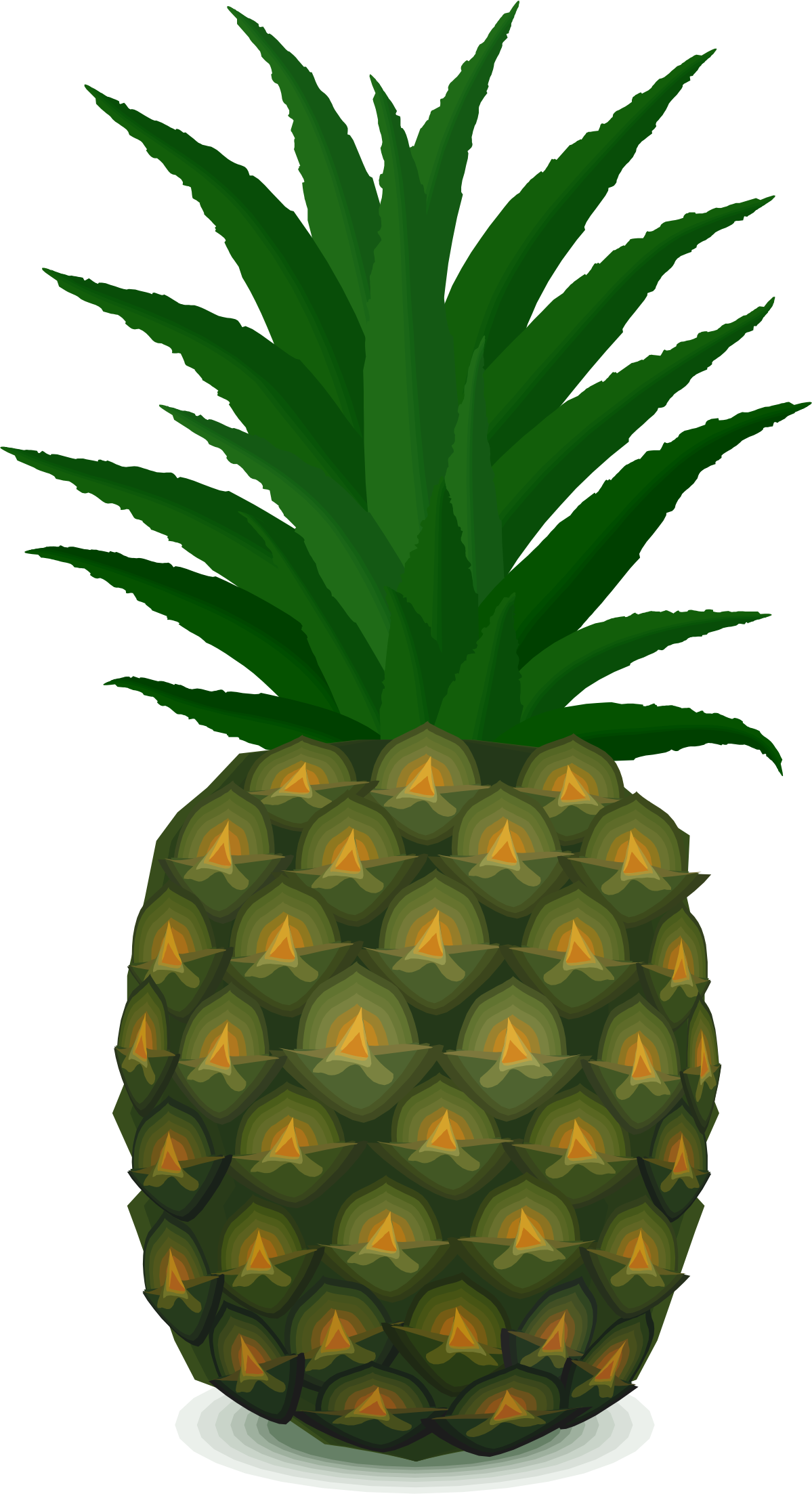 . Pineapple clipart pdf