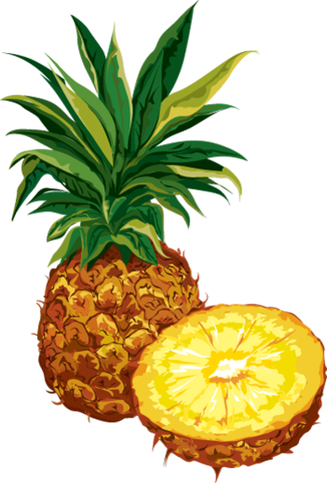 collection of images. Pineapple clipart modern