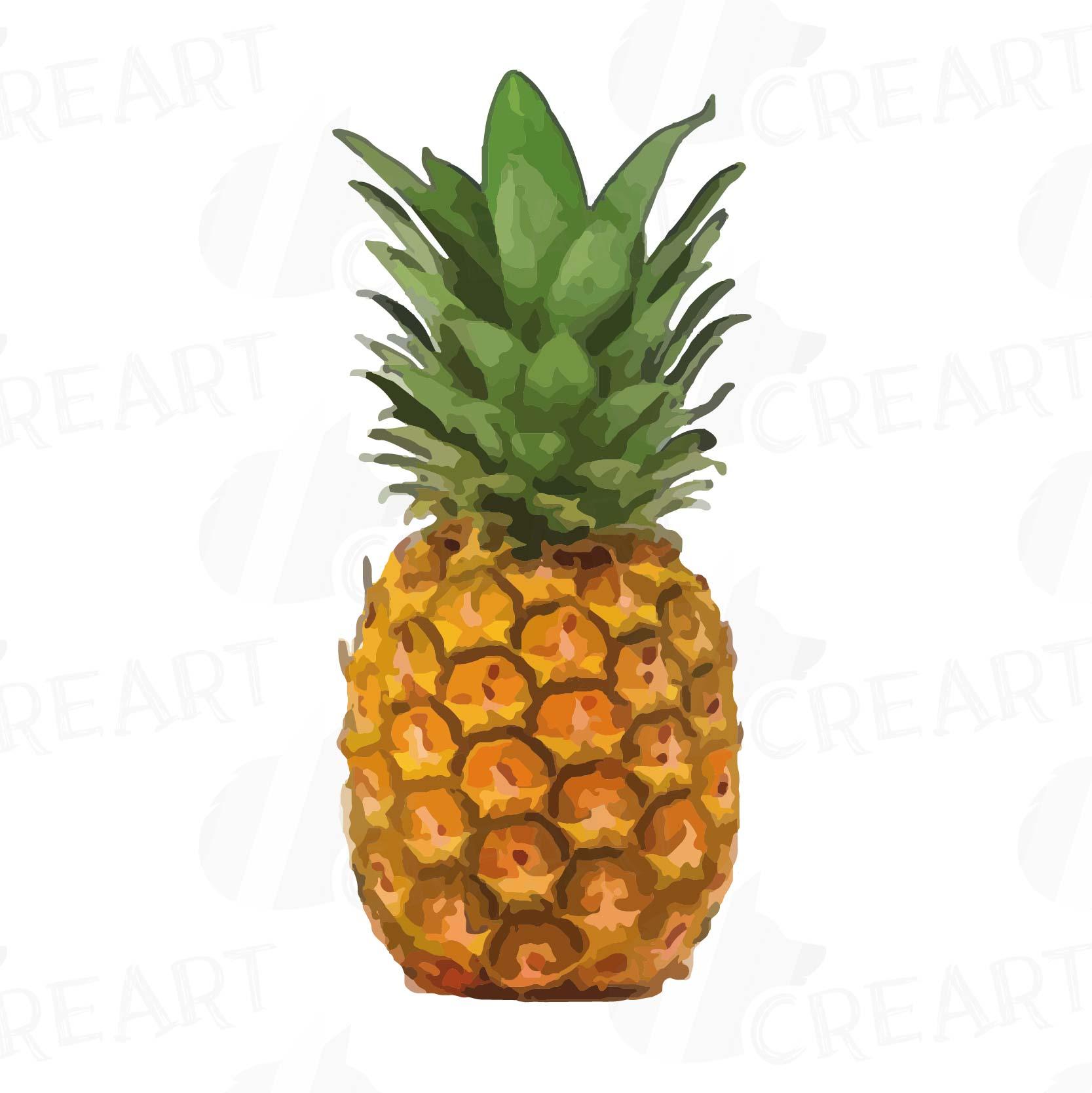 Clipart pineapple pdf, Clipart pineapple pdf Transparent ...
