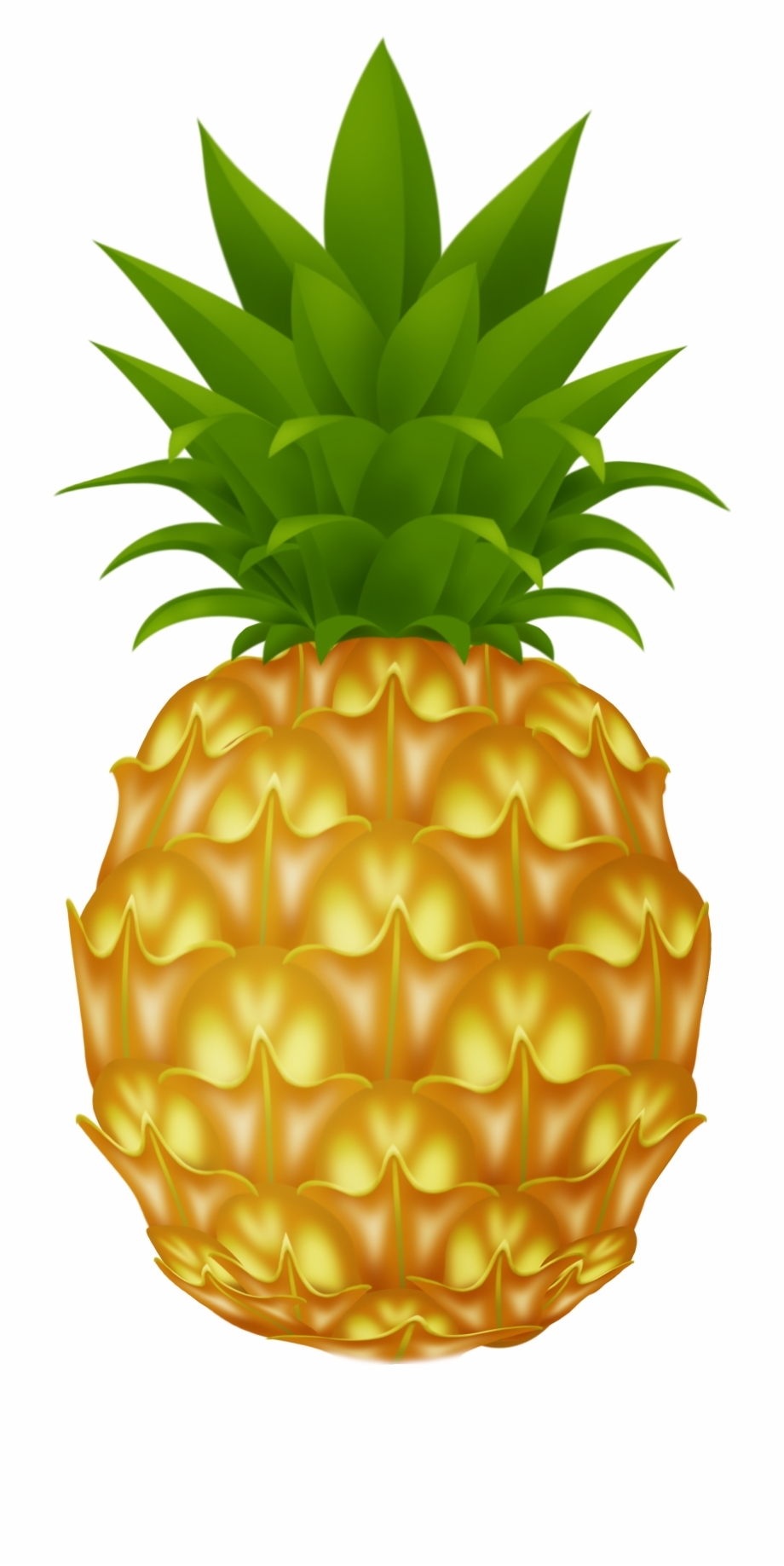 Images cartoon . Clipart pineapple pineaplle
