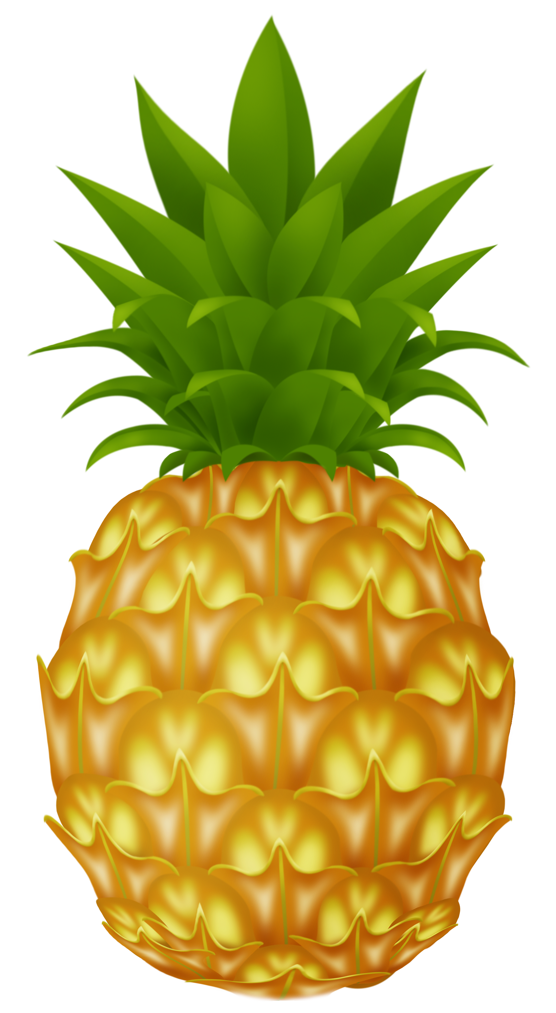 Free images . Pineapple clipart printable