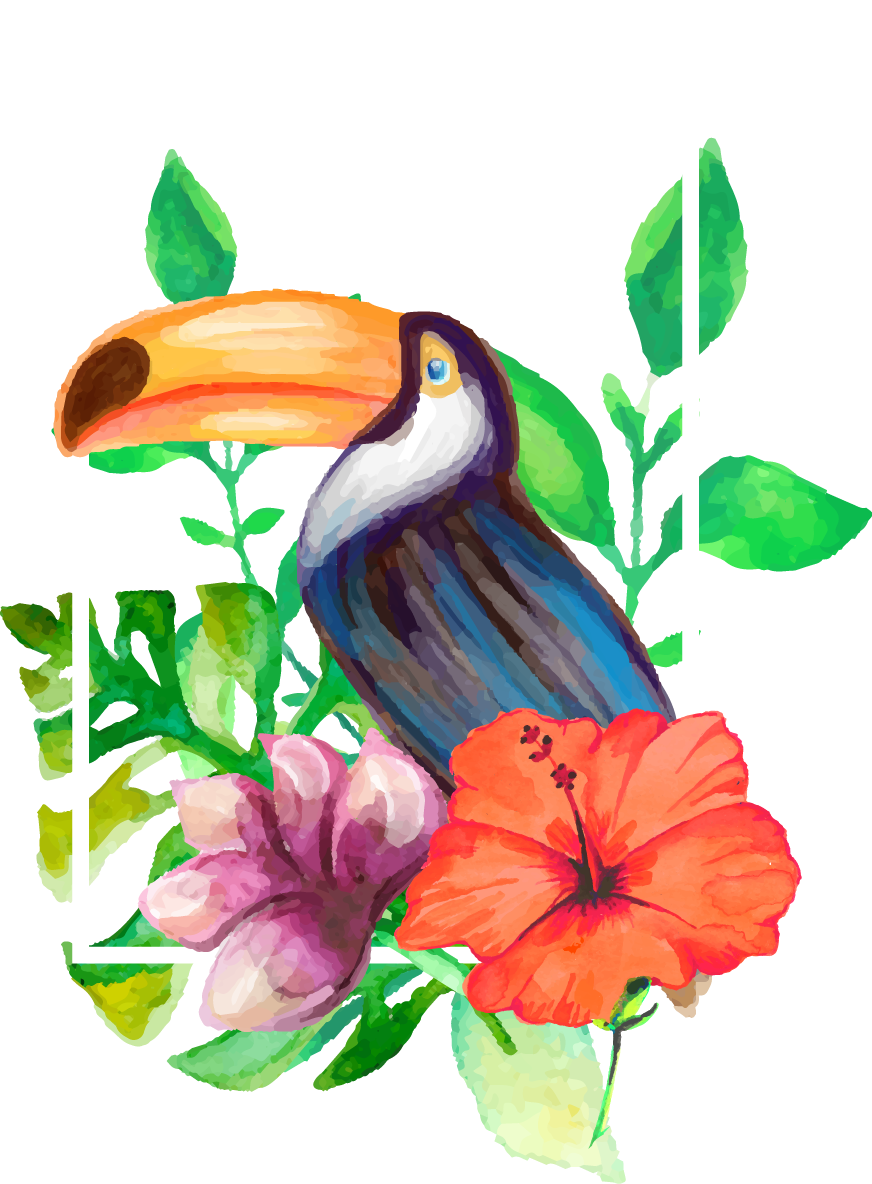 Drawing watercolor painting realistic. Pineapple clipart toucan