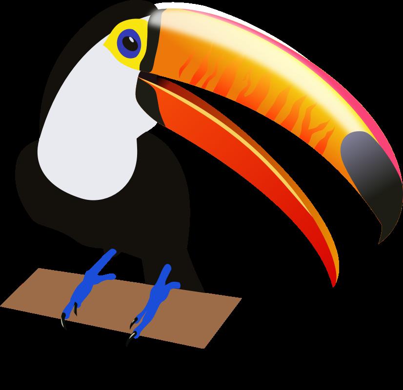Clipart pineapple toucan. Bird clip art cliparts