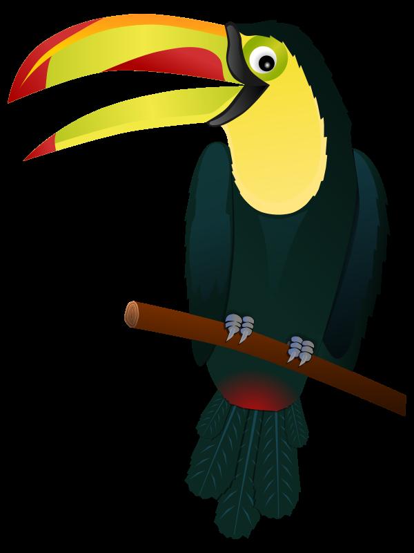 Clipart pineapple toucan. Tropical at getdrawings com