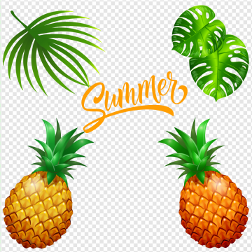 Images png format clip. Pineapple clipart tropical