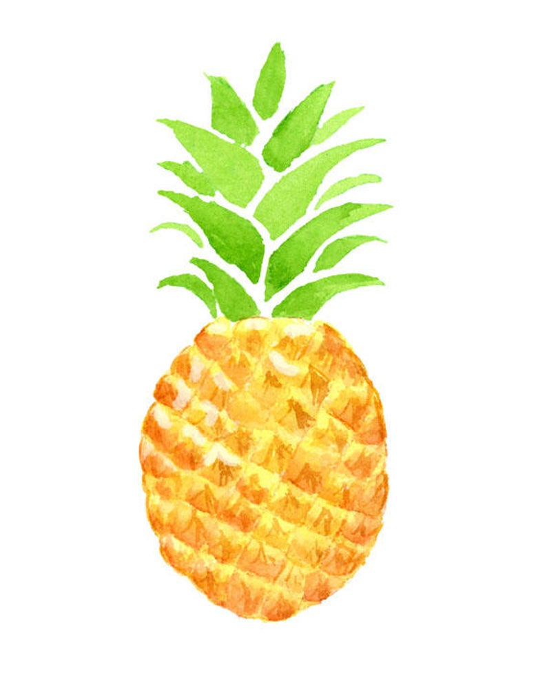 Watercolor summer fruit exotic. Clipart pineapple tropical