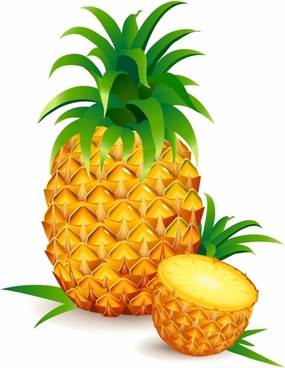 Free download for . Pineapple clipart vector