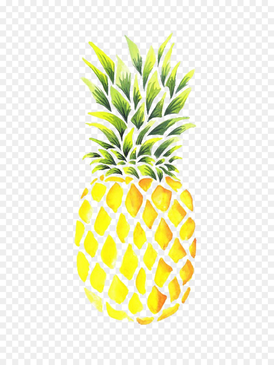 Clipart pineapple watercolor. Pin by amanda on