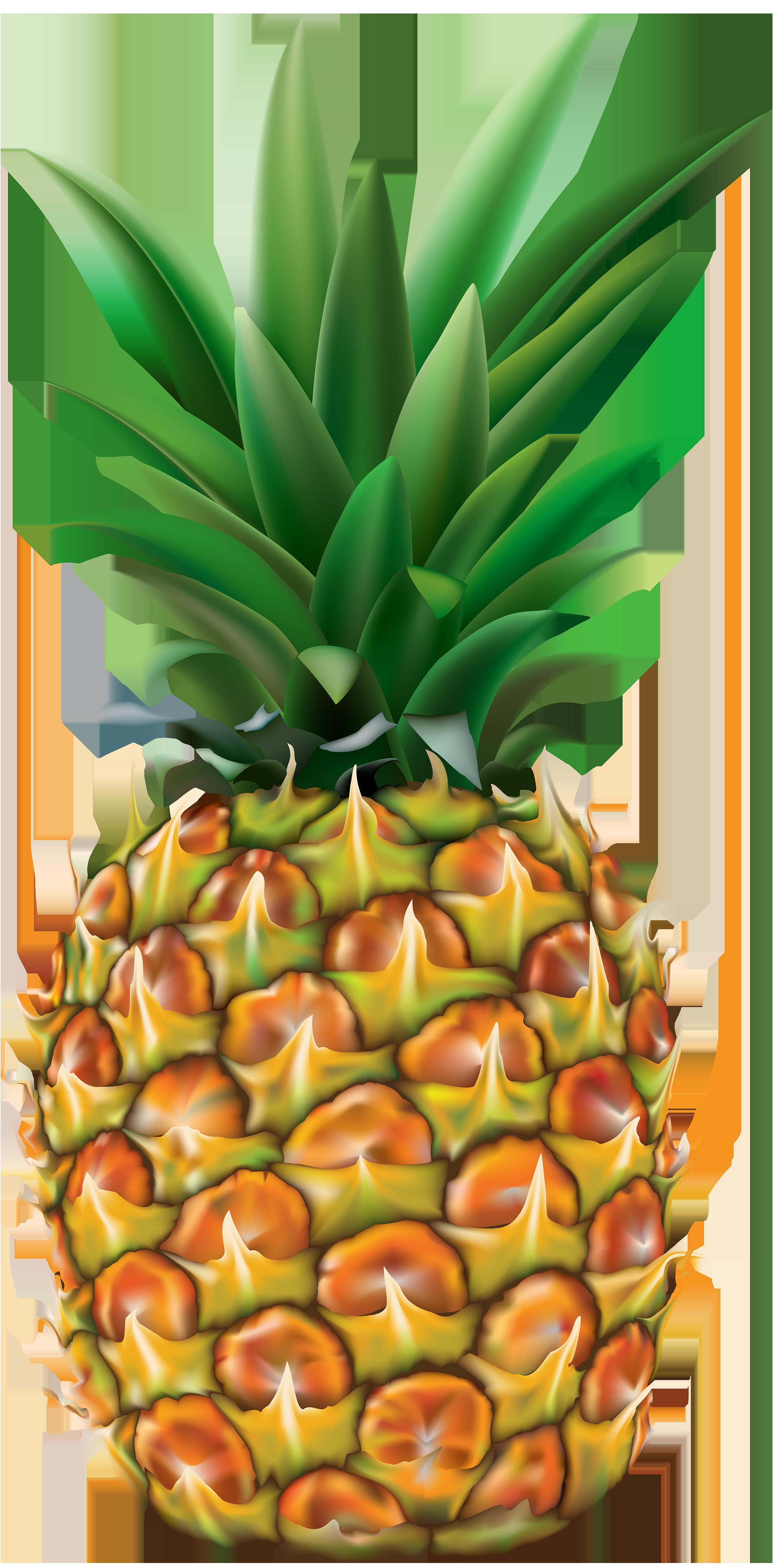 Transparent png clip art. Pineapple clipart