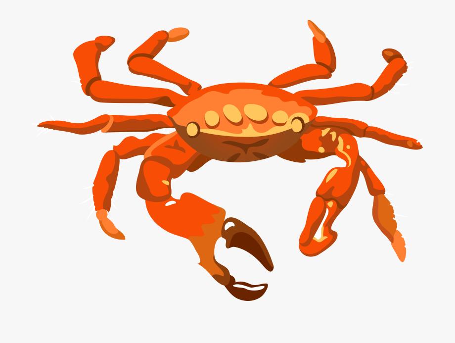 crabs clipart border