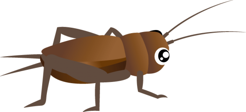 Insects clipart macroinvertebrate. Cricket insect png free