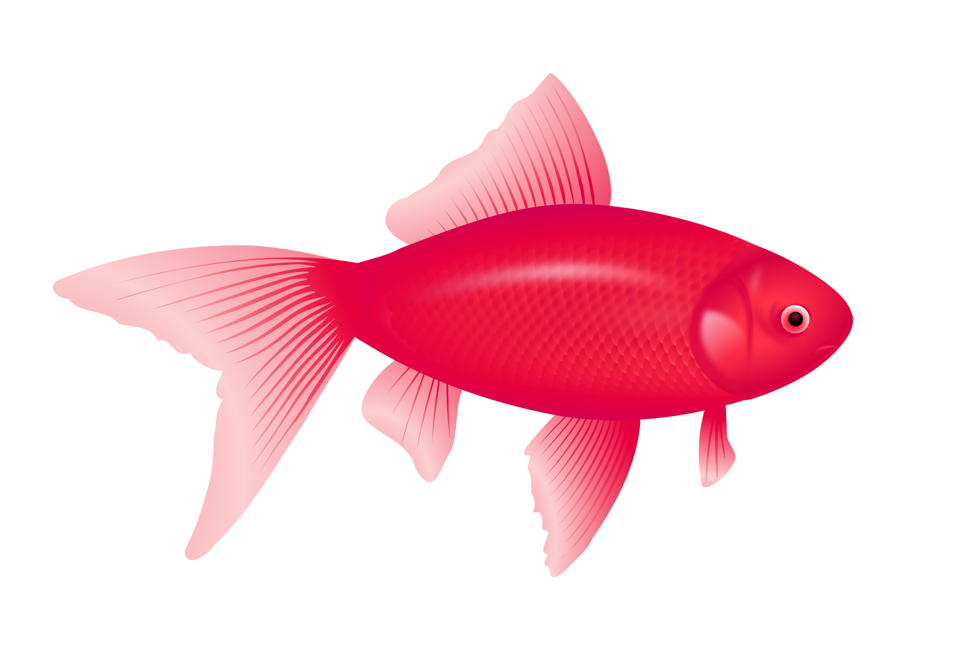 goldfish clipart fishy