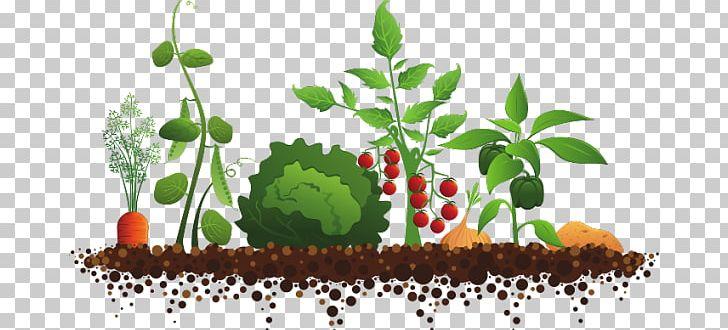 Gate clipart sensory garden. Community gardening club kitchen