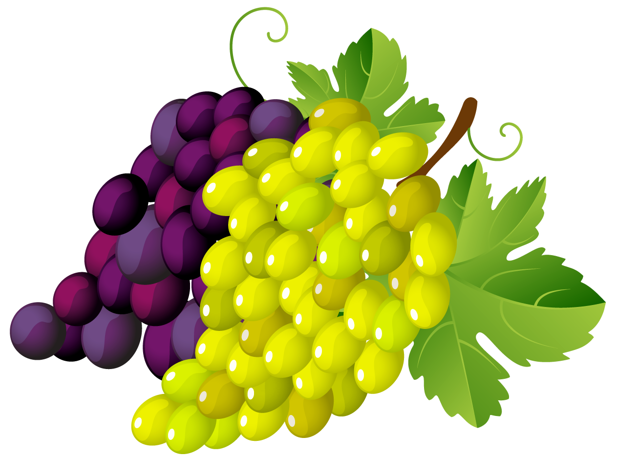 Grapes png images photo. Leaf clipart clear background