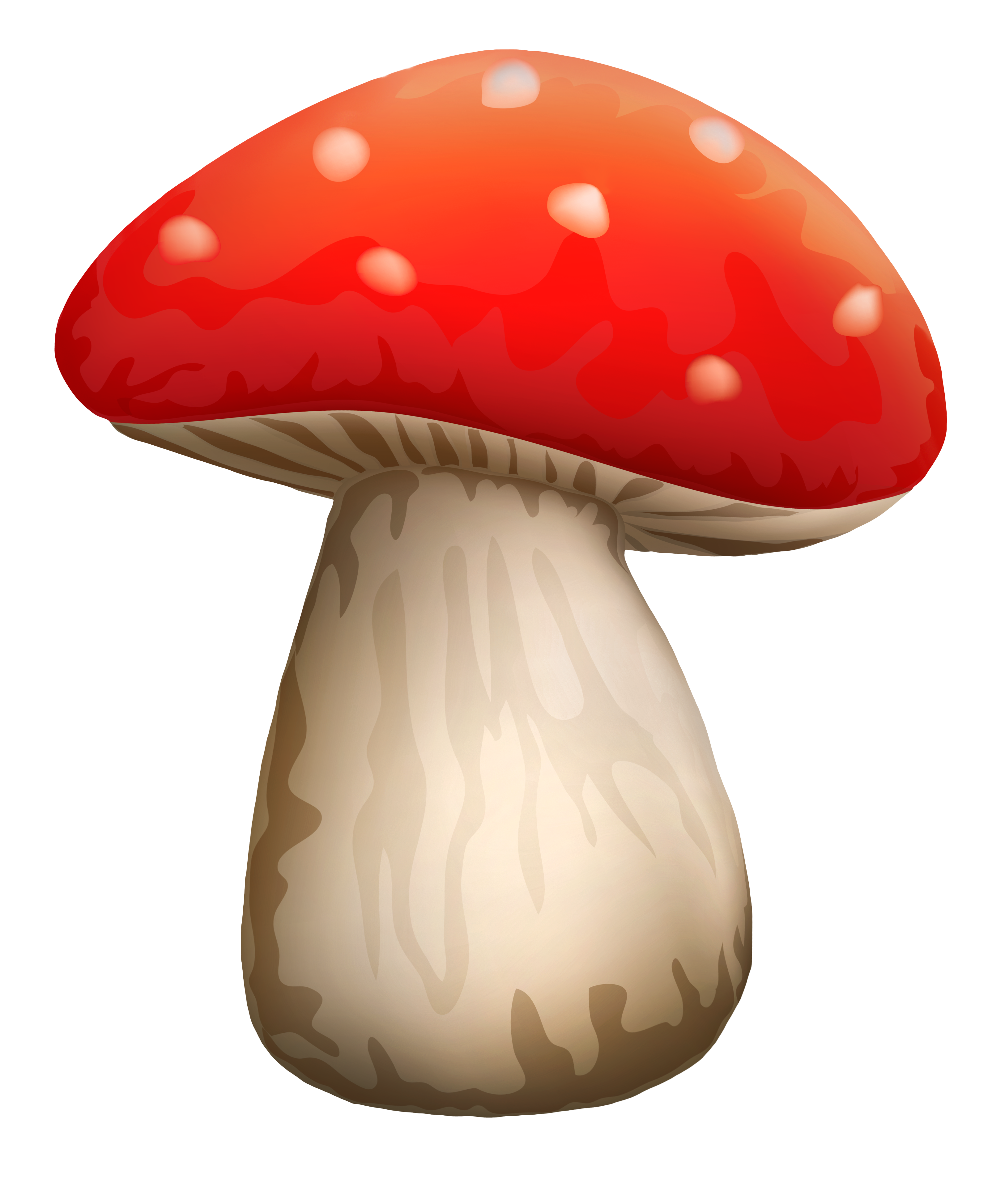 Mushroom clipart wild mushroom. Poisonous red with white